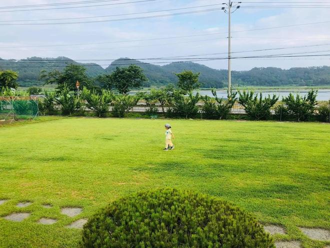 Nhà vườn 2.000m2 giữa cảnh sơn thủy hữu tình của nàng dâu Việt ở Hàn Quốc - 6