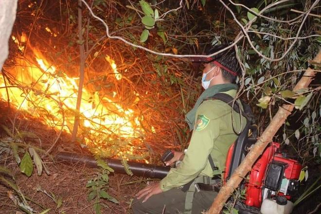 Đám cháy rừng lớn nhất 30 năm qua ở Thừa Thiên Huế đã được dập tắt - 6