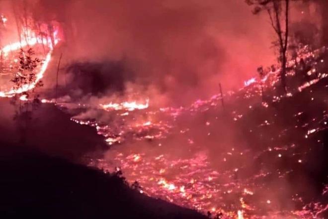 Đám cháy rừng lớn nhất 30 năm qua ở Thừa Thiên Huế đã được dập tắt - 2