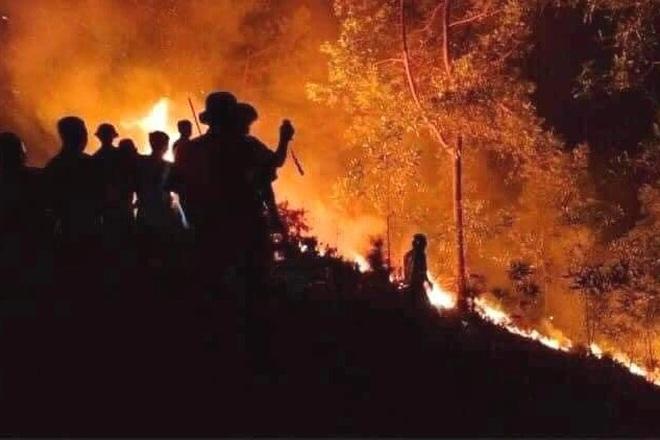 Đám cháy rừng lớn nhất 30 năm qua ở Thừa Thiên Huế đã được dập tắt - 3
