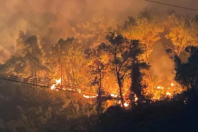 Đám cháy rừng lớn nhất 30 năm qua ở Thừa Thiên Huế đã được dập tắt - 5
