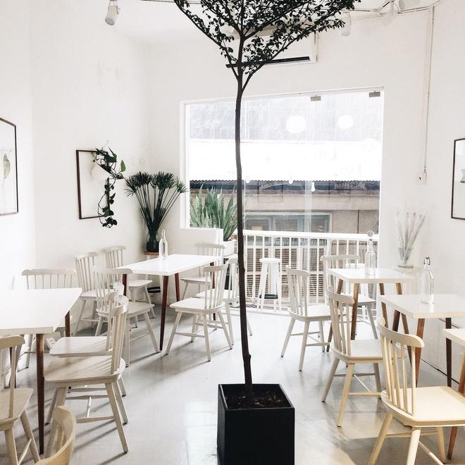 Lựa chọn màu sắc trang trí cho quán cà phê có diện tích nhỏ - 3