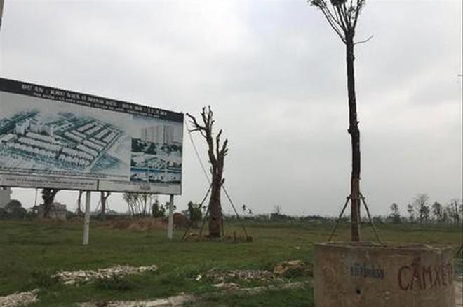Hà Nội: Hai dự án chậm triển khai ở huyện Mê Linh được điều chỉnh quy hoạch - 1