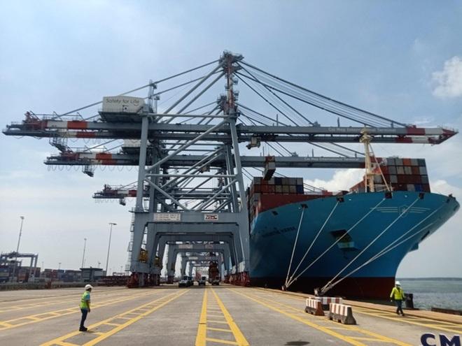 Nhiều tập đoàn hàng đầu thế giới đổ tiền kinh doanh cảng biển Việt Nam - 1