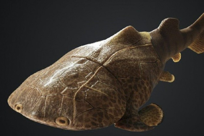 Phát hiện dấu tích loài cá da cứng như áo giáp, có họ hàng ở Việt Nam - 1