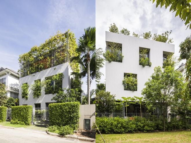 Căn nhà giống như công viên thu nhỏ với đủ loại cây bên trong ở TPHCM - 1