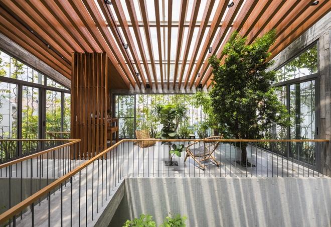 Căn nhà giống như công viên thu nhỏ với đủ loại cây bên trong ở TPHCM - 2