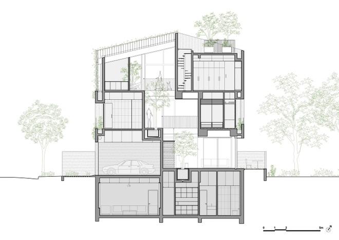 Căn nhà giống như công viên thu nhỏ với đủ loại cây bên trong ở TPHCM - 3