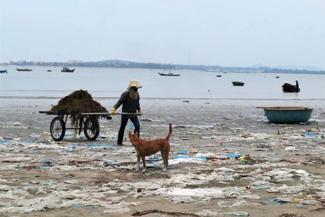 Kinh hãi cảnh rác thải nhựa dày đặc trên đảo ngọc của Quảng Nam - 5