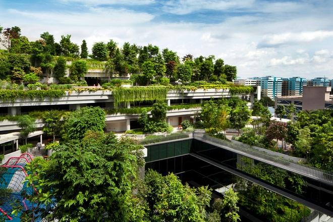 6 tòa nhà xanh ở Singapore được mệnh danh là kỳ quan kiến trúc - 6