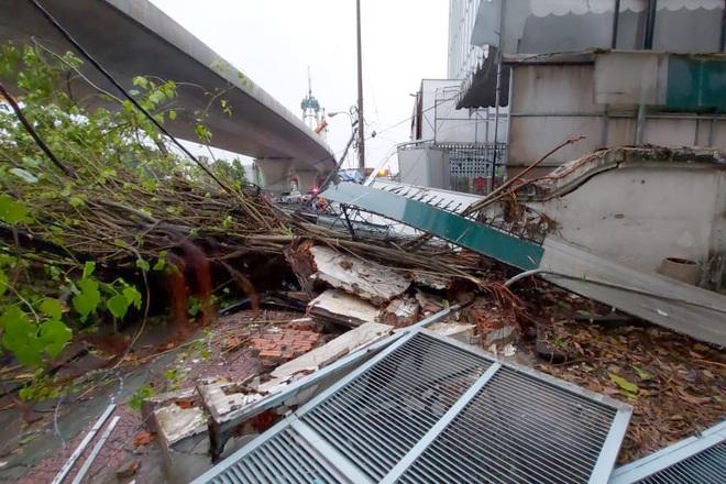 TPHCM: Cây xanh đổ đè người đi đường trong cơn mưa - 1