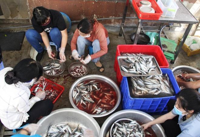 Người Đà thành kho cá, làm bánh tét tiếp sức TPHCM chống dịch - 1