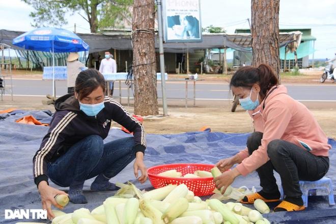 Người dân Đắk Nông nấu nồi bắp 0 đồng phục vụ bà con đi đường về quê - 5