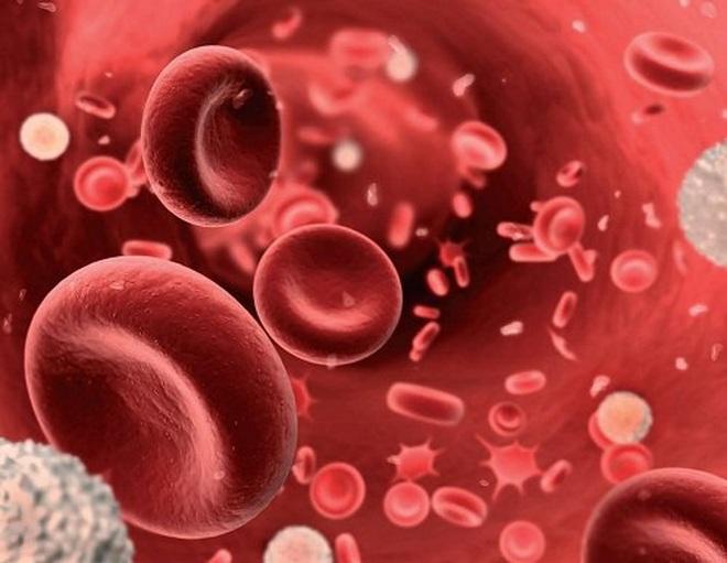 Độ bão hòa oxy trong máu có ý nghĩa ra sao với bệnh nhân Covid-19? - 1
