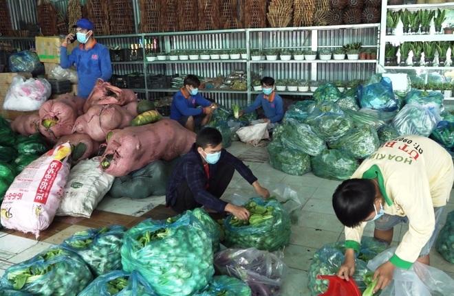 Chủ vựa hoa cảnh mua hàng tấn rau, củ tặng bếp ăn 0 đồng, người nghèo - 3