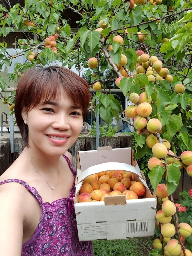Rau siêu thị đắt đỏ, người phụ nữ gốc Việt biến ban công thành vườn ở Đức - 9
