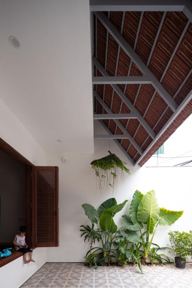 Nhà mái trượt tạo không gian sống xanh, giữ ký ức của gia chủ Nghệ An - 8