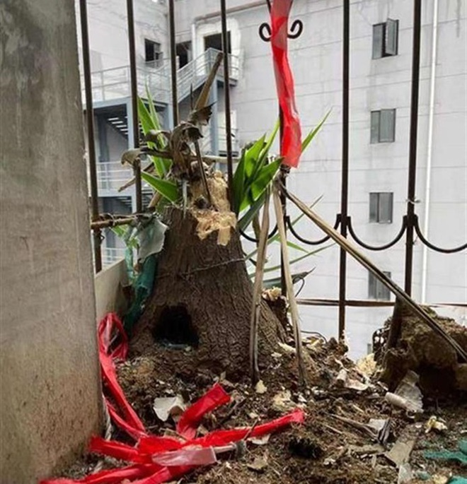 Cư dân hốt hoảng với mối nguy treo trên đầu từ căn hộ bỏ hoang 6 năm - 2