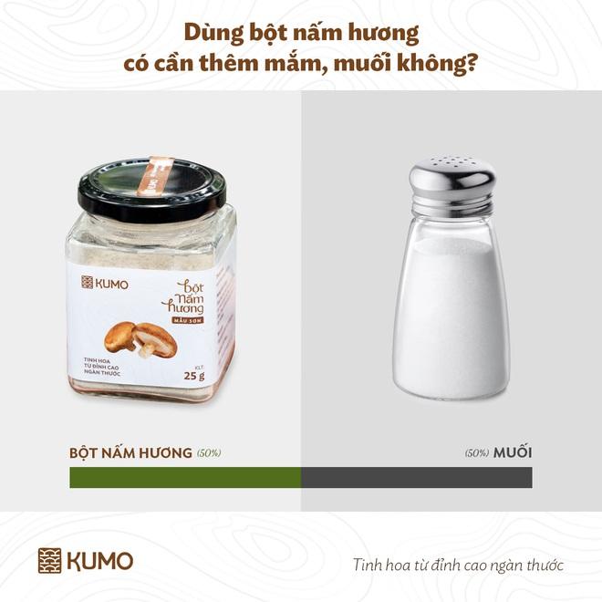 Những điều có thể bạn chưa biết về bột nấm hương - 2
