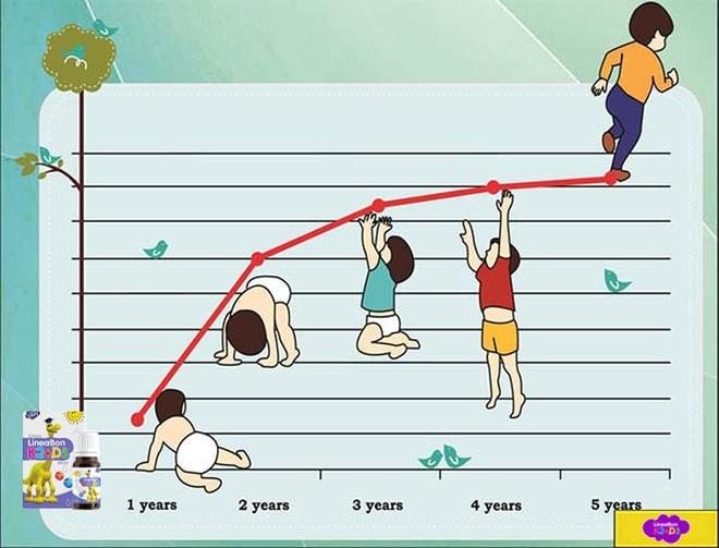 Lý do mẹ nên chọn LineaBon hỗ trợ tăng chiều cao cho trẻ - 1