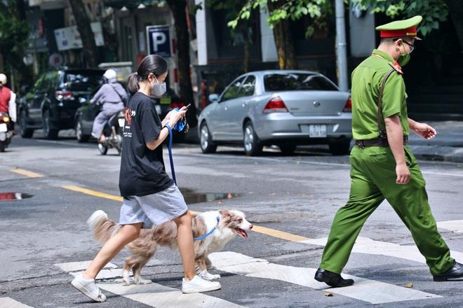 Dắt chó đi dạo khi Hà Nội giãn cách xã hội, cô gái trẻ bị phạt 2 triệu đồng - 1