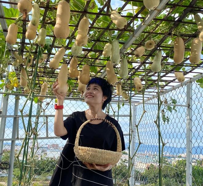 Bí kíp trồng cây dây leo cho quả sai trĩu, ít sâu bệnh của mẹ đảm Đà Nẵng - 7