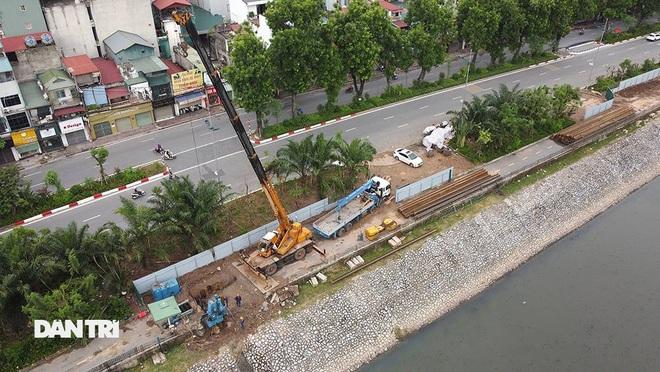 Đánh chuyển hơn 700 cây xanh dọc sông Tô Lịch để làm dự án thoát nước thải - 6