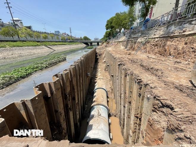 Đánh chuyển hơn 700 cây xanh dọc sông Tô Lịch để làm dự án thoát nước thải - 9