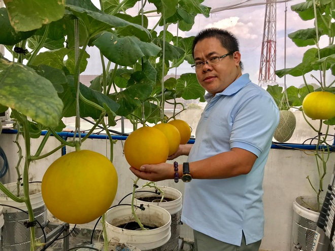 Mê mẩn vườn treo sân thượng, thu 4 tạ quả/ năm của ông bố ở Bình Dương - 4