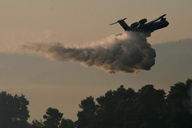 Hứng sóng nhiệt kỷ lục trong 30 năm, Hy Lạp vật lộn với cháy rừng - 3