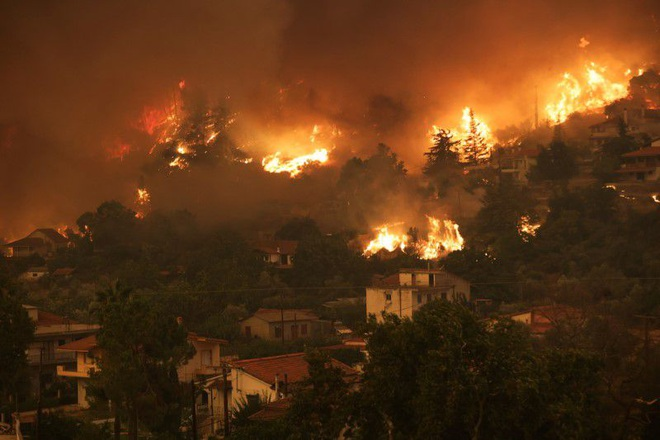 Hứng sóng nhiệt kỷ lục trong 30 năm, Hy Lạp vật lộn với cháy rừng - 1