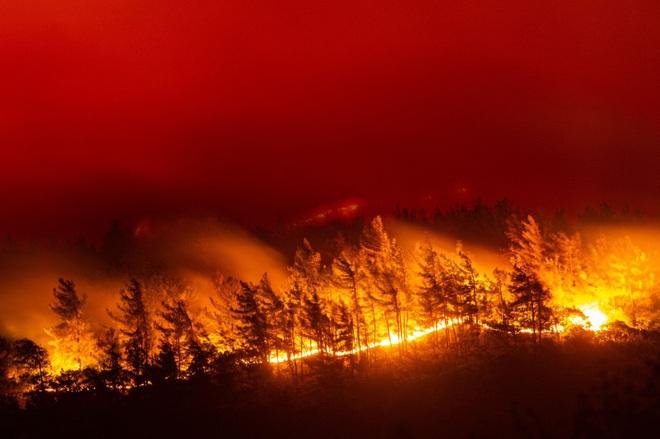 Hứng sóng nhiệt kỷ lục trong 30 năm, Hy Lạp vật lộn với cháy rừng - 2