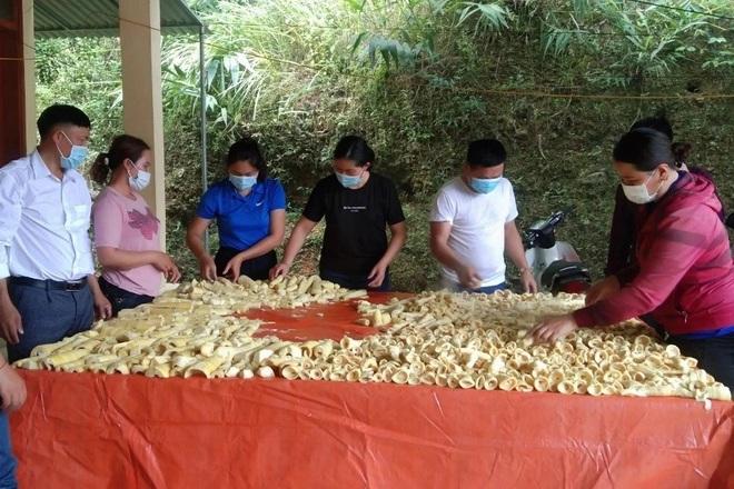 Người dân nghèo biên giới lên rừng hái sản vật ủng hộ khu cách ly - 5