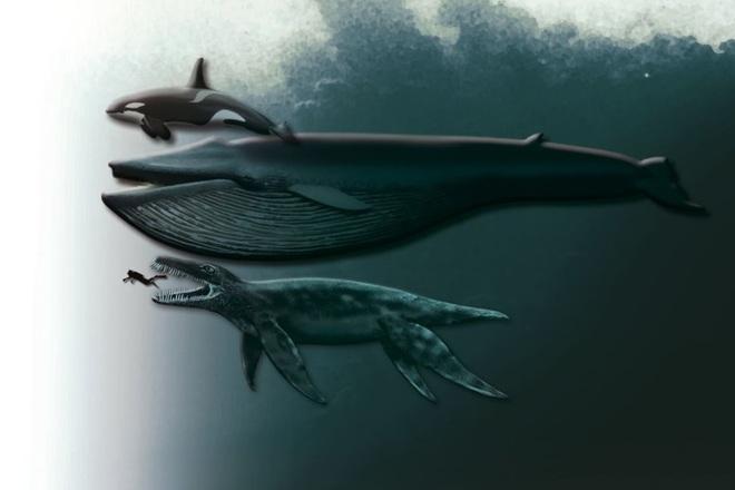 Khám phá thủy quái đáng sợ nhất kỷ Jura với lực cắn gấp 3 lần T-Rex - 2