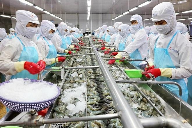 Công ty thủy sản gây xôn xao khi từ chối ưu đãi giảm lãi suất của ngân hàng - 1
