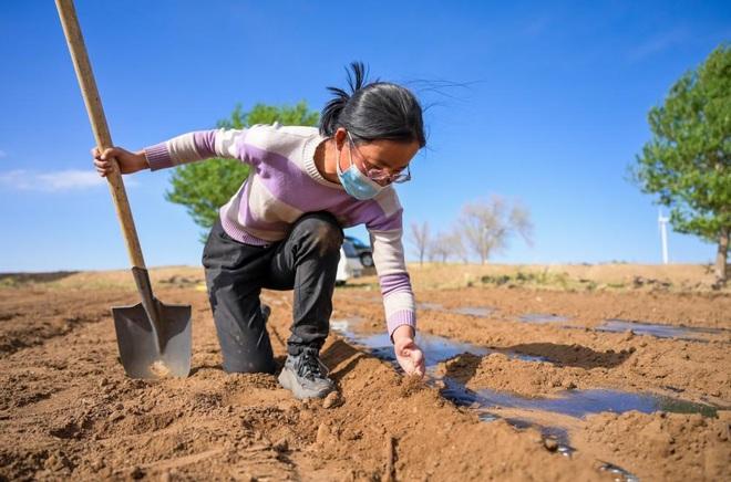 Chị em bỏ phố về quê làm ruộng, kiếm tiền tỷ chăm cha mắc ung thư - 3