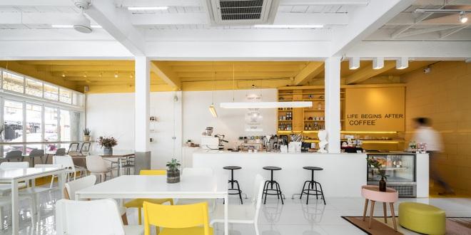 Thiết kế đẹp lạ trong quán cà phê cải tạo từ tòa nhà hơn 70 năm tuổi - 6