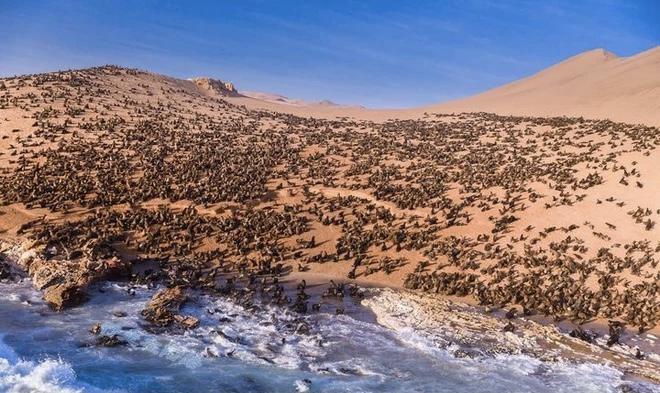 Khám phá bờ biển nguy hiểm bậc nhất hành tinh nhưng cực hút du khách - 7