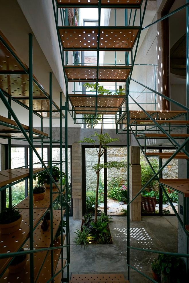 Ngôi nhà Đà Lạt nằm trên sườn dốc với đầy cây lá bên trong  - 3