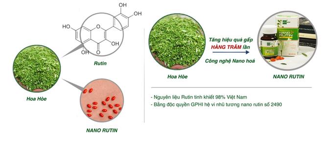 Vì sao Nano Rutin từ hoa hòe được khuyên dùng cho bệnh trĩ? - 1
