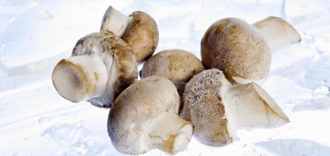 Có nên bảo quản nấm bằng cách đông lạnh? - 1