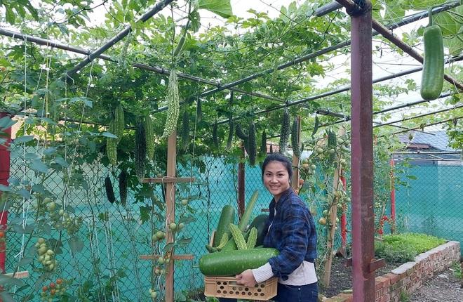 Cải tạo đất toàn sỏi đá, ông bố gốc Việt có vườn toàn trái khủng ở Séc - 13