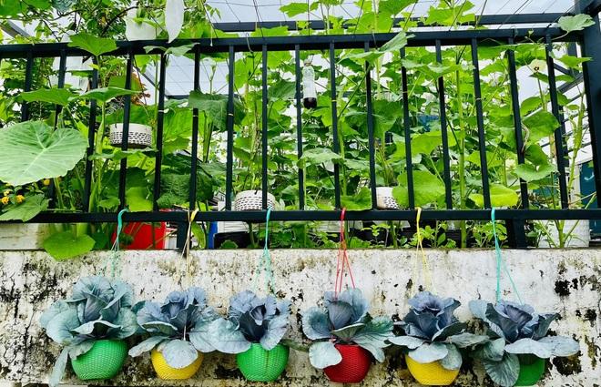 Ngắm vườn như rừng bách thảo trên sân thượng của nữ gia chủ ở Sài Gòn - 3