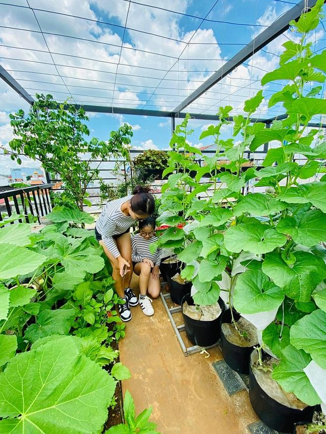 Ngắm vườn như rừng bách thảo trên sân thượng của nữ gia chủ ở Sài Gòn - 8