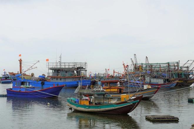 Nhiều tỉnh miền Trung cấm biển, kêu gọi ngư dân tìm nơi tránh bão an toàn - 3