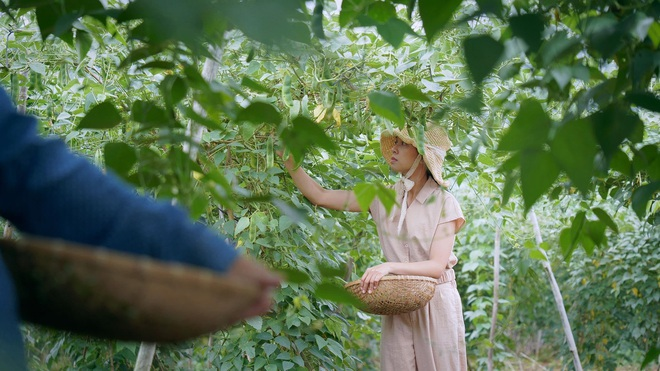 The simple life of thousands of people's dreams of a girl who builds a wooden house and grows vegetables in Da Lat - 1