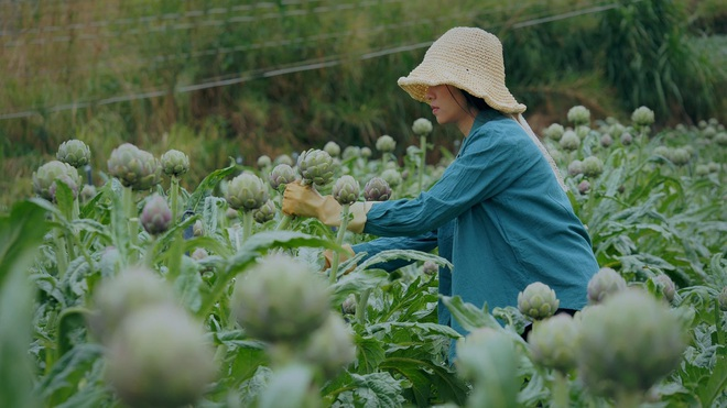 The simple life of thousands of people's dreams of a girl who builds a wooden house and grows vegetables in Da Lat - 9