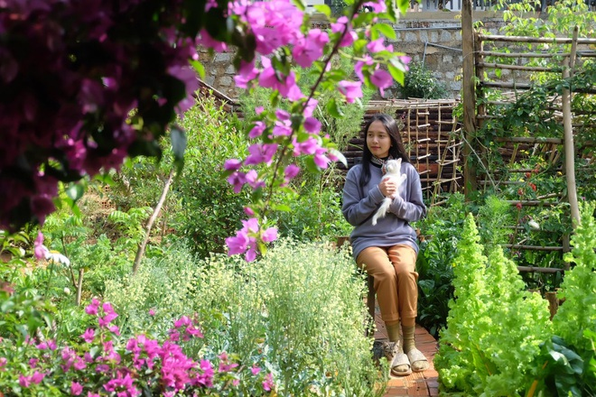 The simple life of thousands of people's dreams of a girl who builds a wooden house and grows vegetables in Da Lat - 12