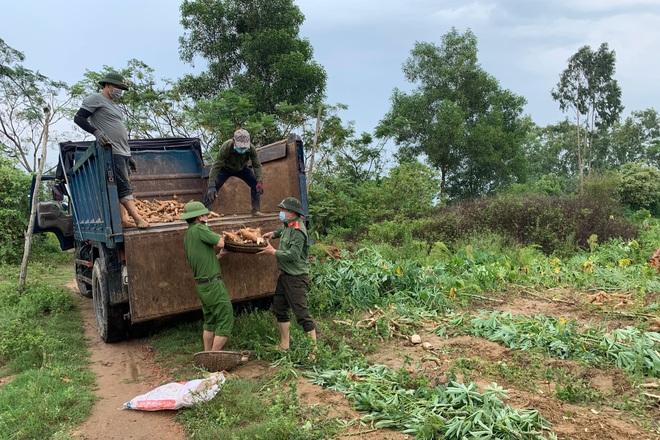 Các chiến sĩ công an chạy đua với mưa bão để thu hoạch sắn giúp người dân  - 6