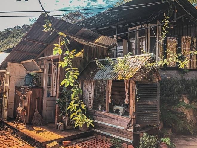 Những quán cà phê trốn khói bụi, ẩn trong rừng ở Đà Lạt - 1